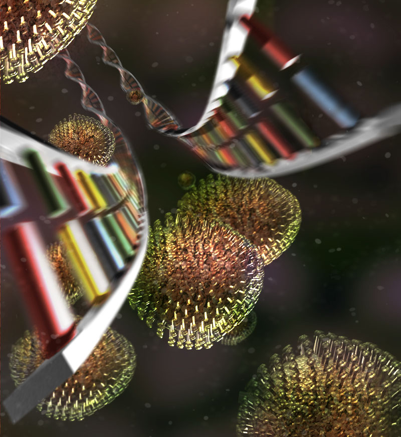 image from Fast DNA